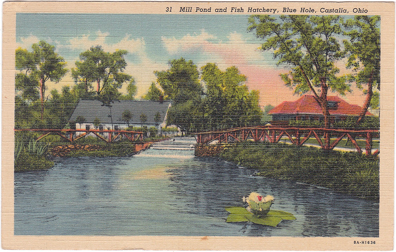 Mill Pond and Fish Hatchery, Blue Hole, Castalia, Ohio (Date Unknown)