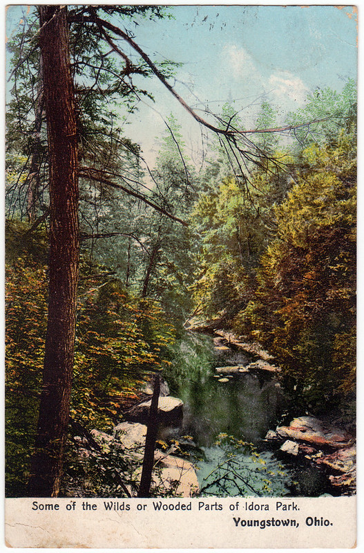 Some of the Wilds and Wooded Parts of Idora Park, Youngstown, Ohio (1908)